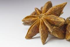 Anís de estrella chino Imágenes de archivo libres de regalías