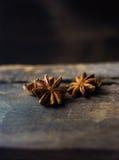 Anís de estrella chino Fotos de archivo