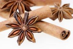 Anís de estrella con los palillos de canela aislados en el fondo blanco Imágenes de archivo libres de regalías