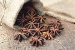 Anís de estrella en bolso de la harpillera Imagenes de archivo