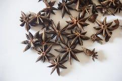 Anís de estrella, especia asiática en un fondo blanco imágenes de archivo libres de regalías