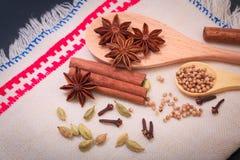 Anís de estrella de la especia del surtido, palillos de canela, cardamon, clavos y coriandro Imagenes de archivo