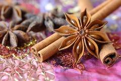 Anís de estrella y palillos de canela imagen de archivo libre de regalías