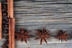 Anís del canela y de estrella Fotos de archivo libres de regalías