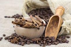 Anís, palillos de cinamomo y granos de café Fotos de archivo