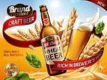 Anúncios da cerveja do trigo Fotos de Stock Royalty Free