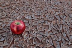 Free An Apple Fruit On A Dry And Cracked Desert Soil. Food Insecurity, Drought And Climate Change Concept Stock Photos - 170320713