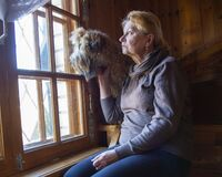 Free An Elderly Sad Woman And A Dog Sit On The Steps And Look Out The Window Stock Photography - 179348442