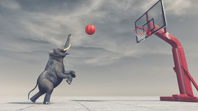 Free An Elephant Throws The Ball At The Basket Royalty Free Stock Photography - 98929387