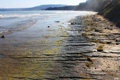 An Empty Beach On The Black Sea Seaside At Obzor, Bulgaria Royalty Free Stock Image