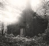 An Old Derelict Mill Building In The Woods Stock Photos