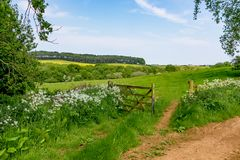 Free An Open Gate To A View Of Rolling English Countryside Stock Photos - 117789353