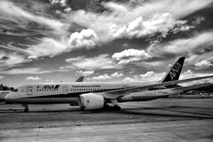 Ana Air Lines Airplane on Royalty Free Stock Photo