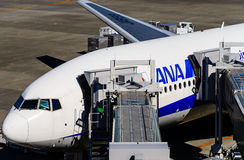 ANA Airplane Stock Images