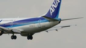 ANA B737-500 que aterra ao AEROPORTO JAPÃO de NARITA video estoque