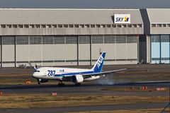 ANA Dream 787 die landen Royalty-vrije Stock Foto's