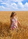 Ana en el campo de trigo 1 Imagen de archivo libre de regalías