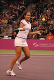 Ana Ivanovic-11 Royalty Free Stock Image