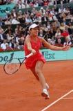 Ana Ivanovic champion of Roland Garros 2008 (3) Royalty Free Stock Image