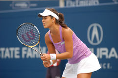Ana Ivanovic at Rogers Cup 2007 (03) Stock Image