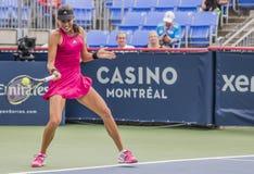 Ana Ivanovic, Tennisprofi Lizenzfreies Stockbild
