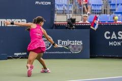 Ana Ivanovic, Tennisprofi Stockbilder
