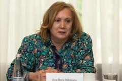 Ana Maria Mihaiescu Royalty Free Stock Image