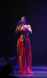 Ana Moura Concert Royalty Free Stock Image