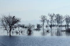 Ana Sagar jezioro w Ajmer Obrazy Royalty Free