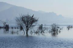 Ana Sagar lake Stock Photos
