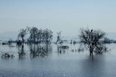 Ana Sagar sjö i Ajmer Royaltyfri Fotografi