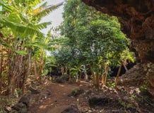 Ana Te Pahu Cave on Easter Island, Chile. Ana Te Pahu Cave, Rapa Nui National Park, Easter Island, Chile Stock Photos