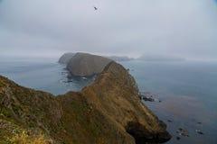 Anacapa海岛 免版税图库摄影