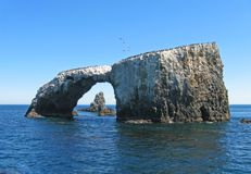 Anacapa arch, cormorants Royalty Free Stock Photography