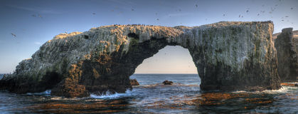 Anacapa Island. A bird-covered pierced rock near Anacapa Island, Channel Islands National Park, California Stock Photography