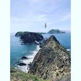 Anacapa Island royalty free stock photo