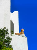 Anacapri, Itália, o 4 de maio de 2014: O detalhe arquitetónico de casa de campo de San Michele Imagens de Stock