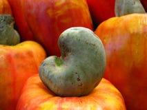 Anacardo y fruta Foto de archivo libre de regalías