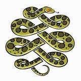 Anaconda snake Royalty Free Stock Photos
