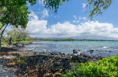 Anaehoomalu海滩Waikoloa夏威夷 免版税库存照片