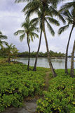 Anaehoomalu bay in hawaii Royalty Free Stock Images