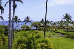 Anaehoomalu bay in hawaii Royalty Free Stock Image