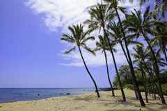 Anaehoomalu bay in hawaii Stock Photos