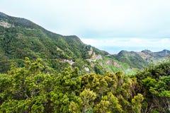 Anaga góry, Tenerife, Hiszpania, Europa Zdjęcia Stock