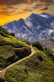 Anaga mountain in Tenerife, Spain, Europe. Picturesque places Royalty Free Stock Photo