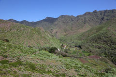 Anaga Mountains, Tenerife Stock Photography
