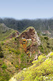 Anaga Rural Park. Tenerife. Canary Is. Stock Images