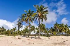 Anakena海滩在复活节岛,智利 库存图片