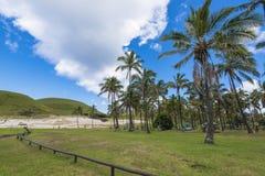 Anakena beach and coconut trees. The beautiful beach of Anakena with the coconut trees and the moai of Ahu Nau Nau royalty free stock photography