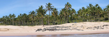 Anakena beach on the Easter Island Royalty Free Stock Photography